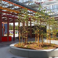 Read Tonsley's Lounge Forest wins 2019 Master Landscapers award
